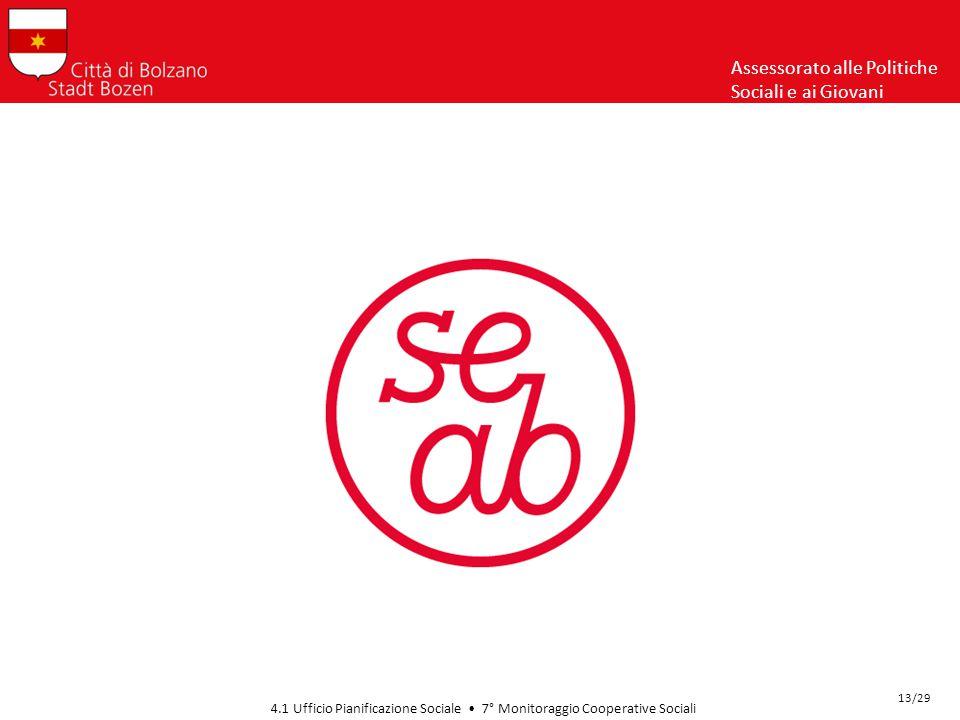 Assessorato alle Politiche Sociali e ai Giovani 4.1 Ufficio Pianificazione Sociale 7° Monitoraggio Cooperative Sociali 13/29
