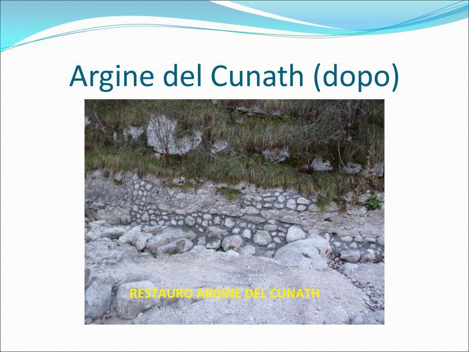 Argine del Cunath (dopo)