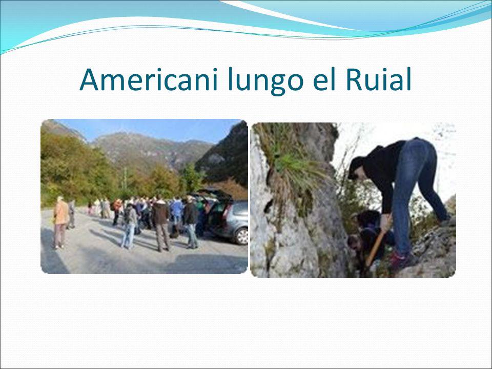 Americani lungo el Ruial
