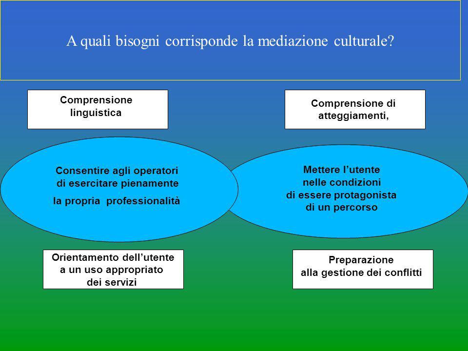 A quali bisogni corrisponde la mediazione culturale? Comprensione di atteggiamenti, Preparazione alla gestione dei conflitti Mettere l'utente nelle co