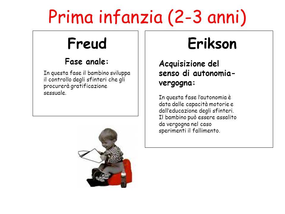 Prima infanzia (2-3 anni) Freud Fase anale: In questa fase il bambino sviluppa il controllo degli sfinteri che gli procurerà gratificazione sessuale.