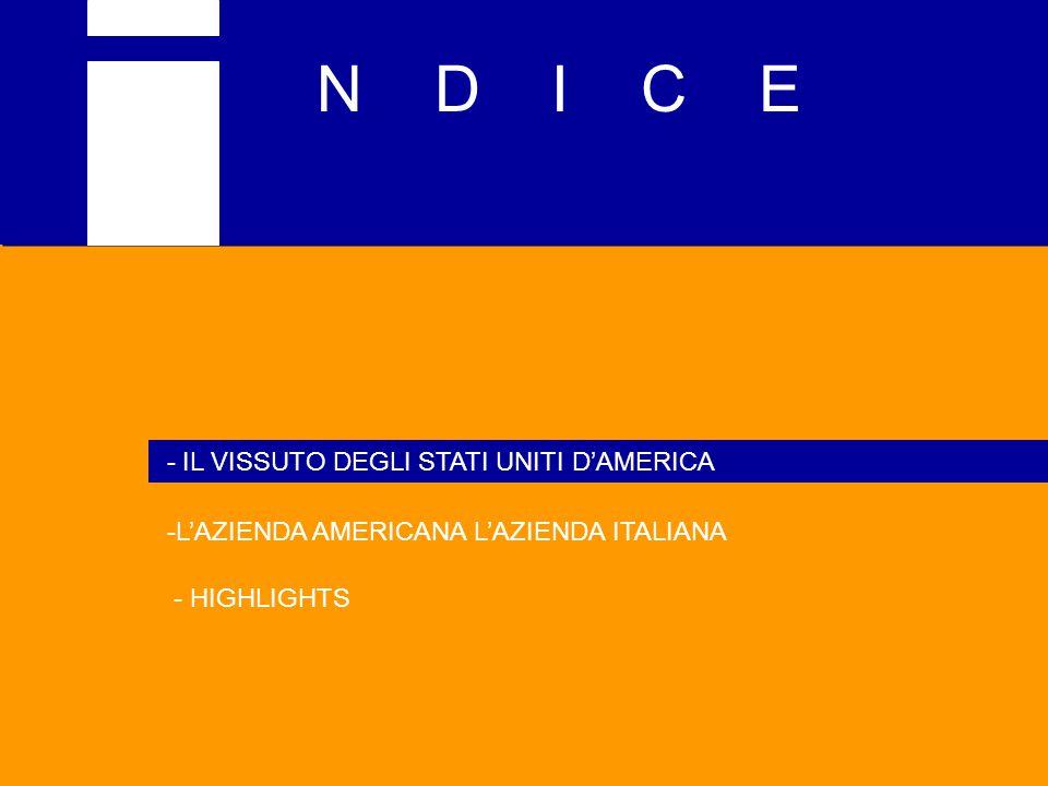 N D I C E - IL VISSUTO DEGLI STATI UNITI D'AMERICA -L'AZIENDA AMERICANA L'AZIENDA ITALIANA - HIGHLIGHTS