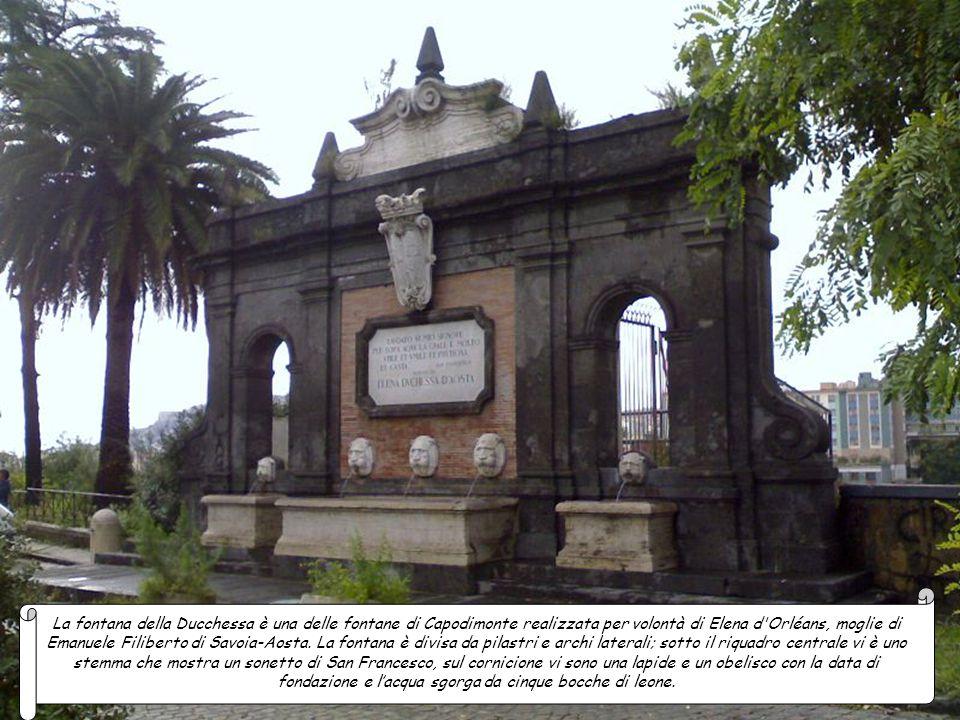. La fontana della Sirena fu eretta per ornare i giardini della stazione ferroviaria, ma nel 1924 fu spostata in piazza Sannazaro. Il gruppo marmoreo