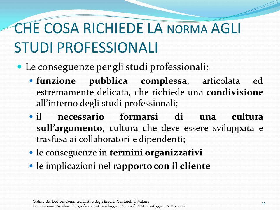 12 CHE COSA RICHIEDE LA NORMA AGLI STUDI PROFESSIONALI Le conseguenze per gli studi professionali: funzione pubblica complessa, articolata ed estremam
