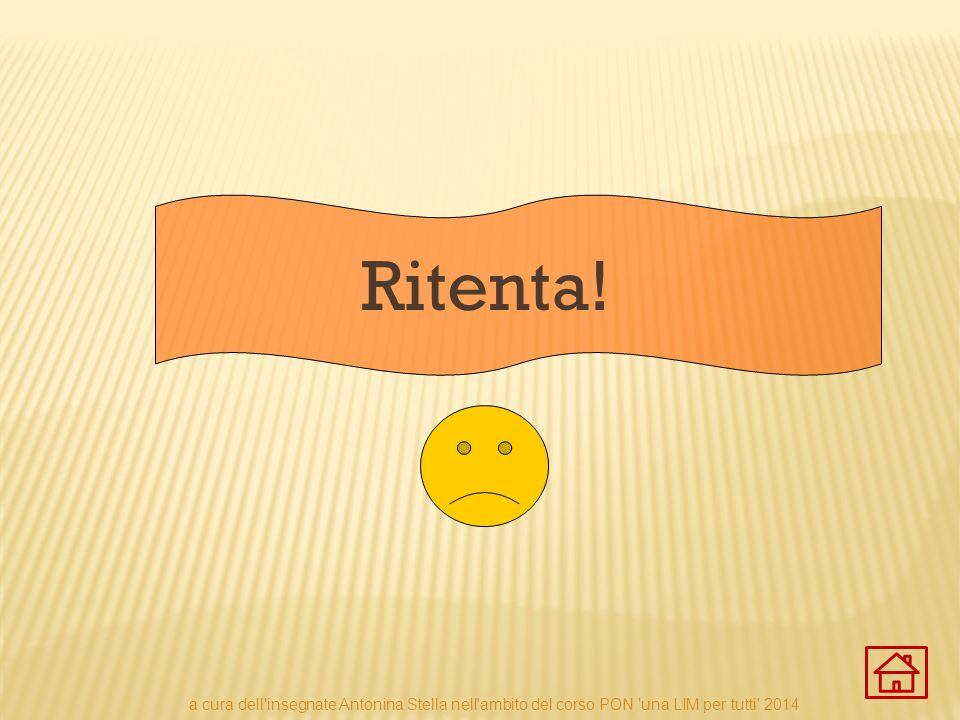 Ritenta! a cura dell'insegnate Antonina Stella nell'ambito del corso PON 'una LIM per tutti' 2014