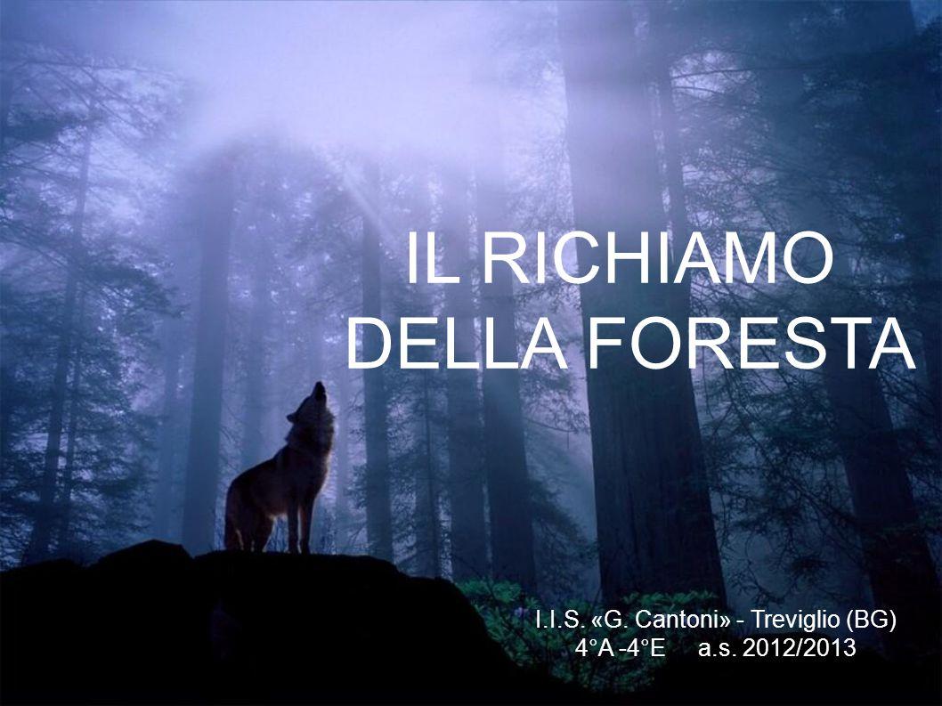 IL RICHIAMO DELLA FORESTA I.I.S. «G. Cantoni» - Treviglio (BG) 4°A -4°E a.s. 2012/2013
