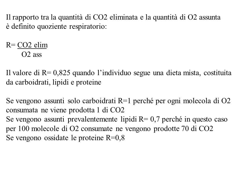 Il rapporto tra la quantità di CO2 eliminata e la quantità di O2 assunta è definito quoziente respiratorio: R= CO2 elim O2 ass Il valore di R= 0,825 q