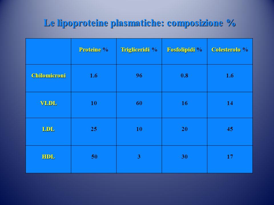 Proteine Proteine % Trigliceridi Trigliceridi % Fosfolipidi Fosfolipidi % Colesterolo Colesterolo %Chilomicroni1.6960.81.6 VLDL10601614 LDL25102045 HDL 5033017 Le lipoproteine plasmatiche: composizione %