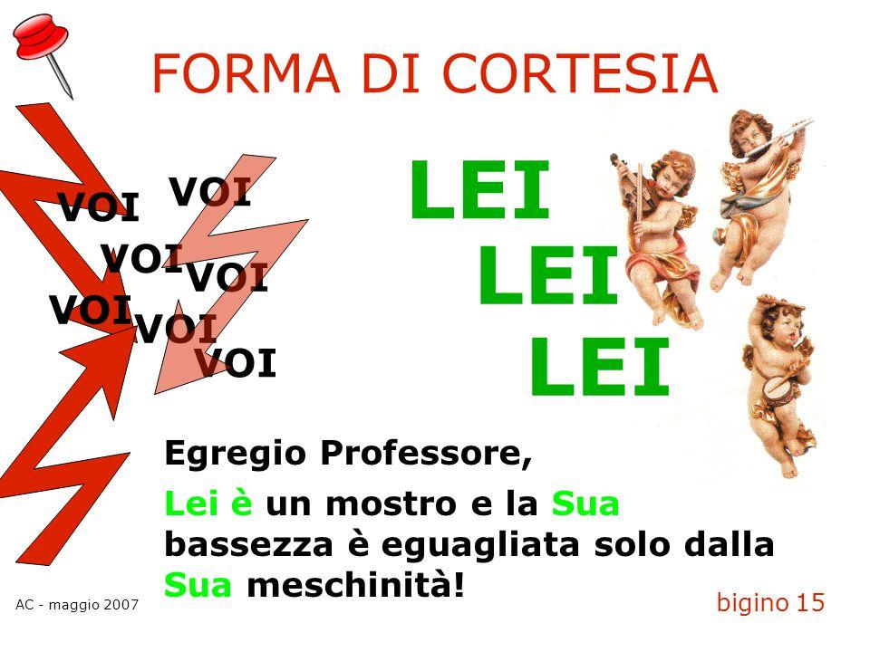 AC - maggio 2007 bigino 15 FORMA DI CORTESIA VOI LEI Egregio Professore, Lei è un mostro e la Sua bassezza è eguagliata solo dalla Sua meschinità!