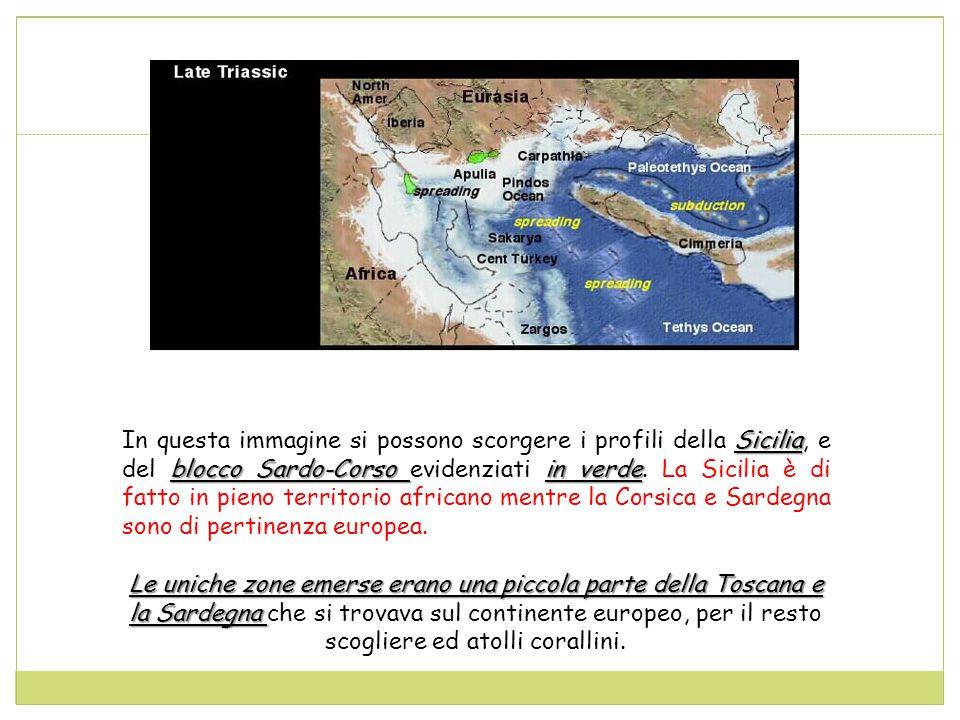 Sicilia blocco Sardo-Corso in verde In questa immagine si possono scorgere i profili della Sicilia, e del blocco Sardo-Corso evidenziati in verde.
