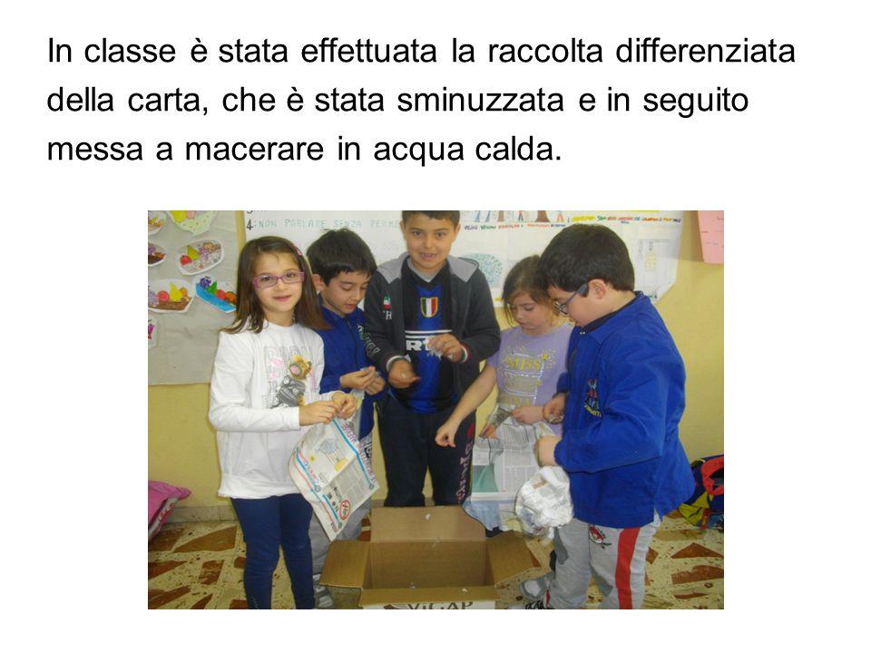 In classe è stata effettuata la raccolta differenziata della carta, che è stata sminuzzata e in seguito messa a macerare in acqua calda.