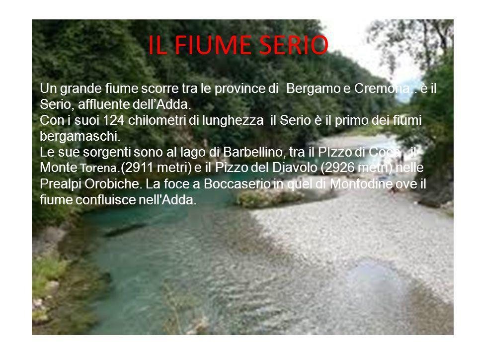 IL FIUME SERIO Un grande fiume scorre tra le province di Bergamo e Cremona:: è il Serio, affluente dell'Adda. Con i suoi 124 chilometri di lunghezza i