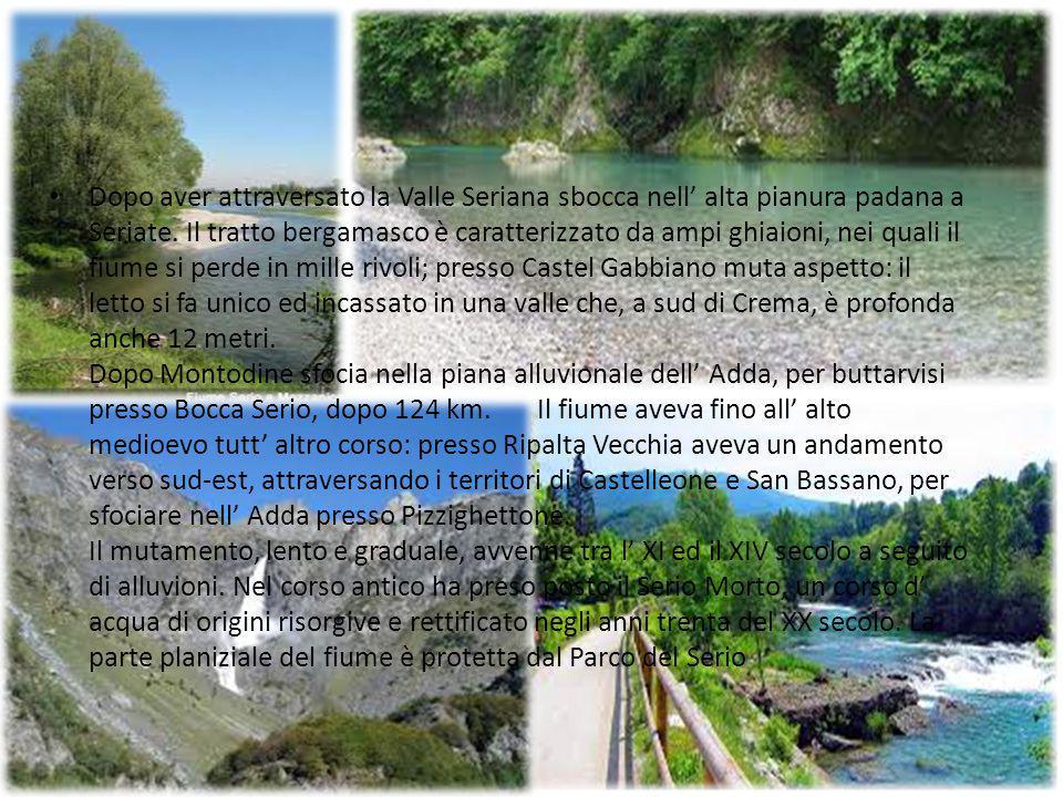 Dopo aver attraversato la Valle Seriana sbocca nell' alta pianura padana a Seriate. Il tratto bergamasco è caratterizzato da ampi ghiaioni, nei quali