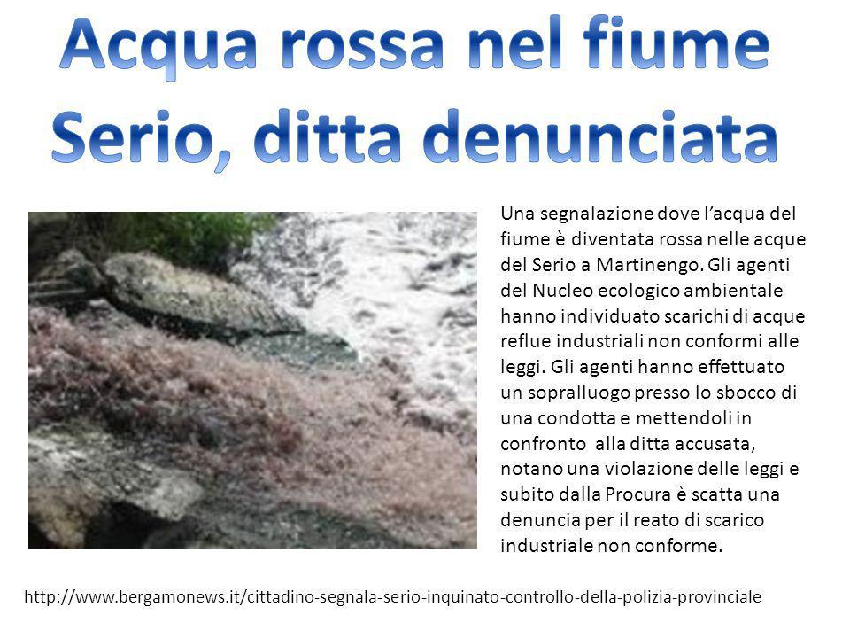 Una segnalazione dove l'acqua del fiume è diventata rossa nelle acque del Serio a Martinengo. Gli agenti del Nucleo ecologico ambientale hanno individ