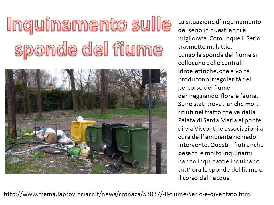 Torna l allarme inquinamento nel fiume Serio.