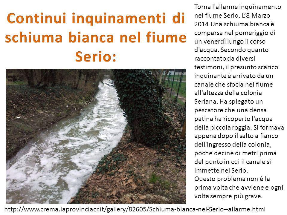 Torna l'allarme inquinamento nel fiume Serio. L'8 Marzo 2014 Una schiuma bianca è comparsa nel pomeriggio di un venerdì lungo il corso d'acqua. Second