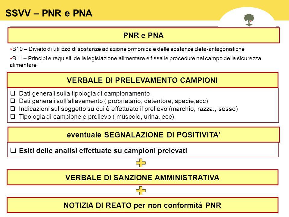 20 SSVV – PNR e PNA B10 – Divieto di utilizzo di sostanze ad azione ormonica e delle sostanze Beta-antagonistiche B11 – Principi e requisiti della leg
