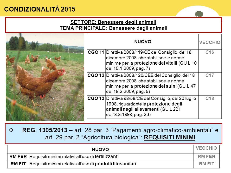 39 SETTORE: Benessere degli animali TEMA PRINCIPALE: Benessere degli animali NUOVO VECCHIO CGO 11Direttiva 2008/119/CE del Consiglio, del 18 dicembre