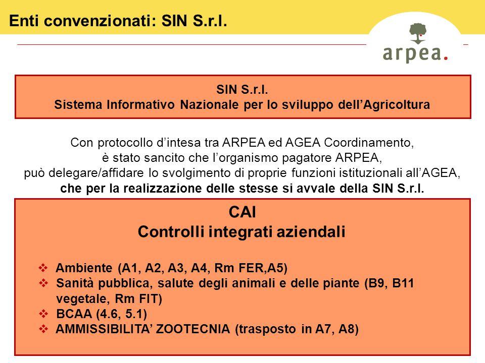 7 Enti convenzionati: SIN S.r.l. Con protocollo d'intesa tra ARPEA ed AGEA Coordinamento, è stato sancito che l'organismo pagatore ARPEA, può delegare