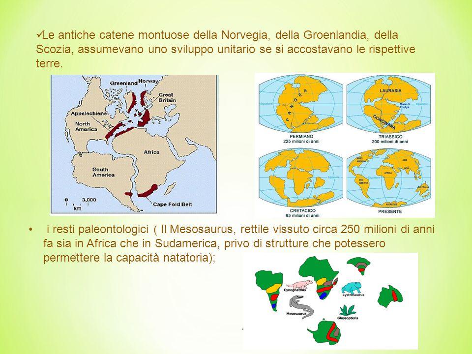 4 i resti paleontologici ( Il Mesosaurus, rettile vissuto circa 250 milioni di anni fa sia in Africa che in Sudamerica, privo di strutture che potessero permettere la capacità natatoria); Le antiche catene montuose della Norvegia, della Groenlandia, della Scozia, assumevano uno sviluppo unitario se si accostavano le rispettive terre.