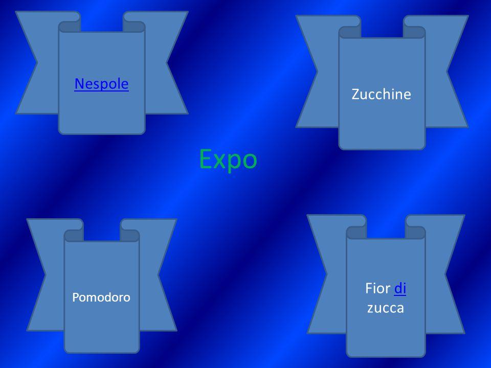 Expo Nespole Zucchine Pomodoro Fior di zuccadi