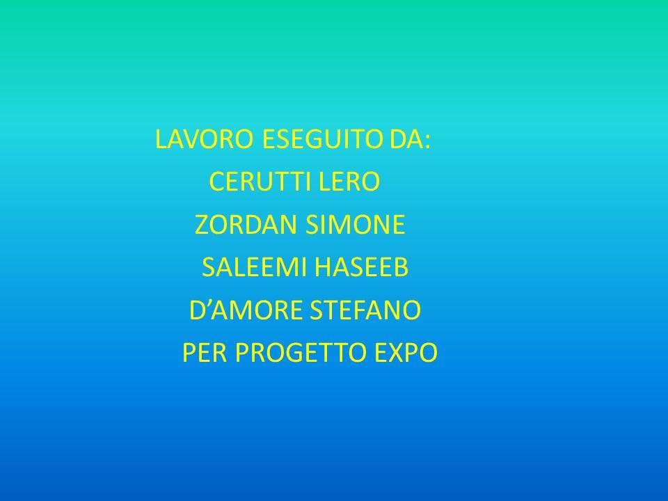LAVORO ESEGUITO DA: CERUTTI LERO ZORDAN SIMONE SALEEMI HASEEB D'AMORE STEFANO PER PROGETTO EXPO