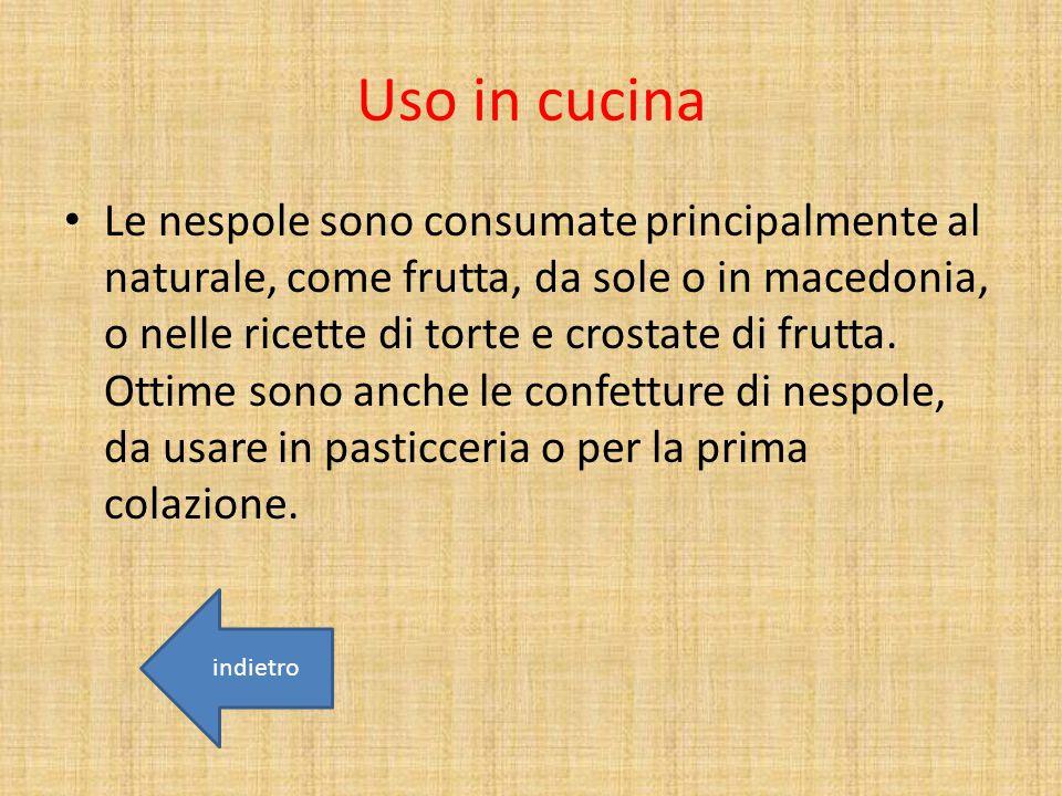 Uso in cucina Le nespole sono consumate principalmente al naturale, come frutta, da sole o in macedonia, o nelle ricette di torte e crostate di frutta