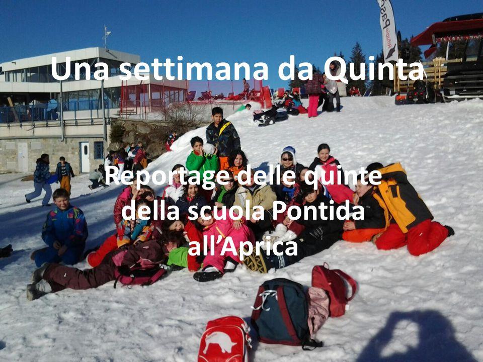 Una settimana da Quinta Reportage delle quinte della scuola Pontida all'Aprica