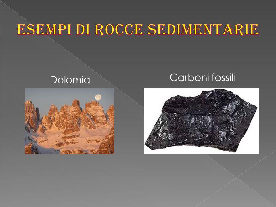 Dolomia Carboni fossili