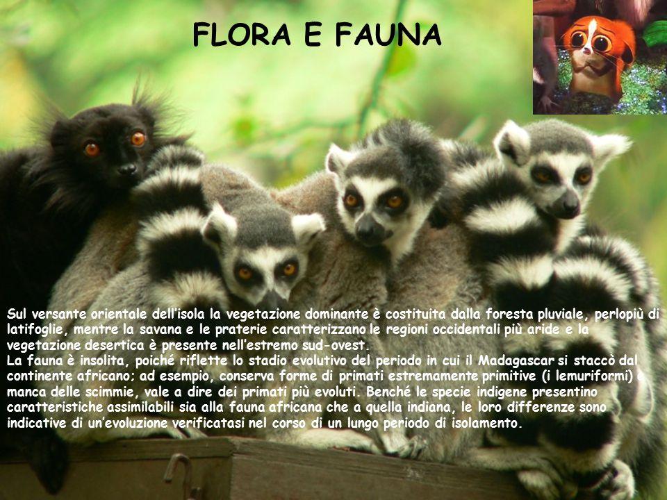FLORA E FAUNA Sul versante orientale dell'isola la vegetazione dominante è costituita dalla foresta pluviale, perlopiù di latifoglie, mentre la savana