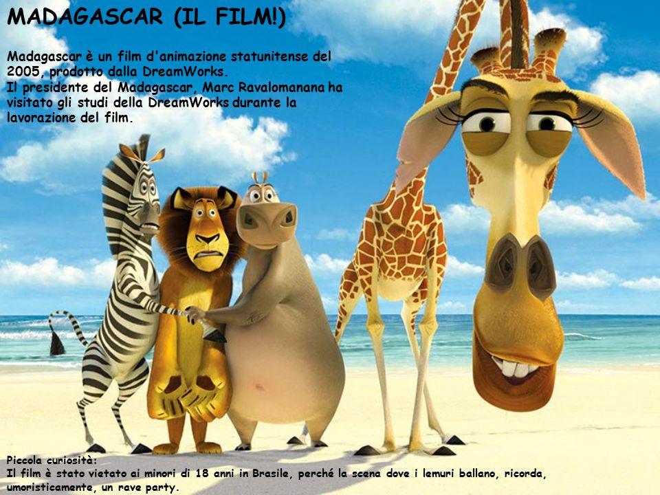 MADAGASCAR (IL FILM!) Piccola curiosità: Il film è stato vietato ai minori di 18 anni in Brasile, perché la scena dove i lemuri ballano, ricorda, umor