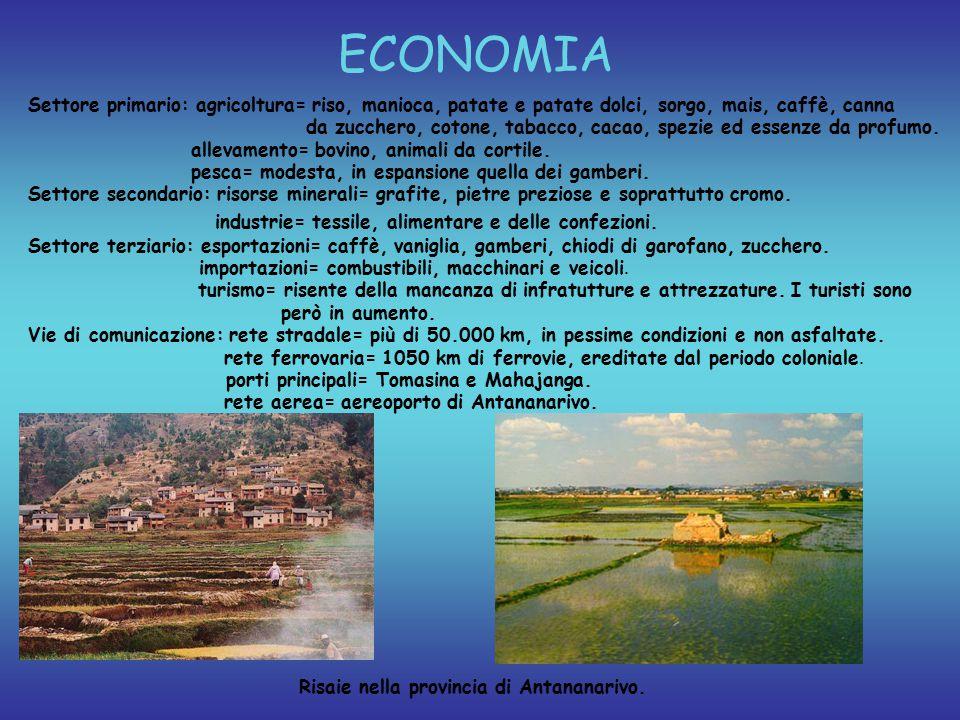 ECONOMIA Settore primario: agricoltura= riso, manioca, patate e patate dolci, sorgo, mais, caffè, canna da zucchero, cotone, tabacco, cacao, spezie ed