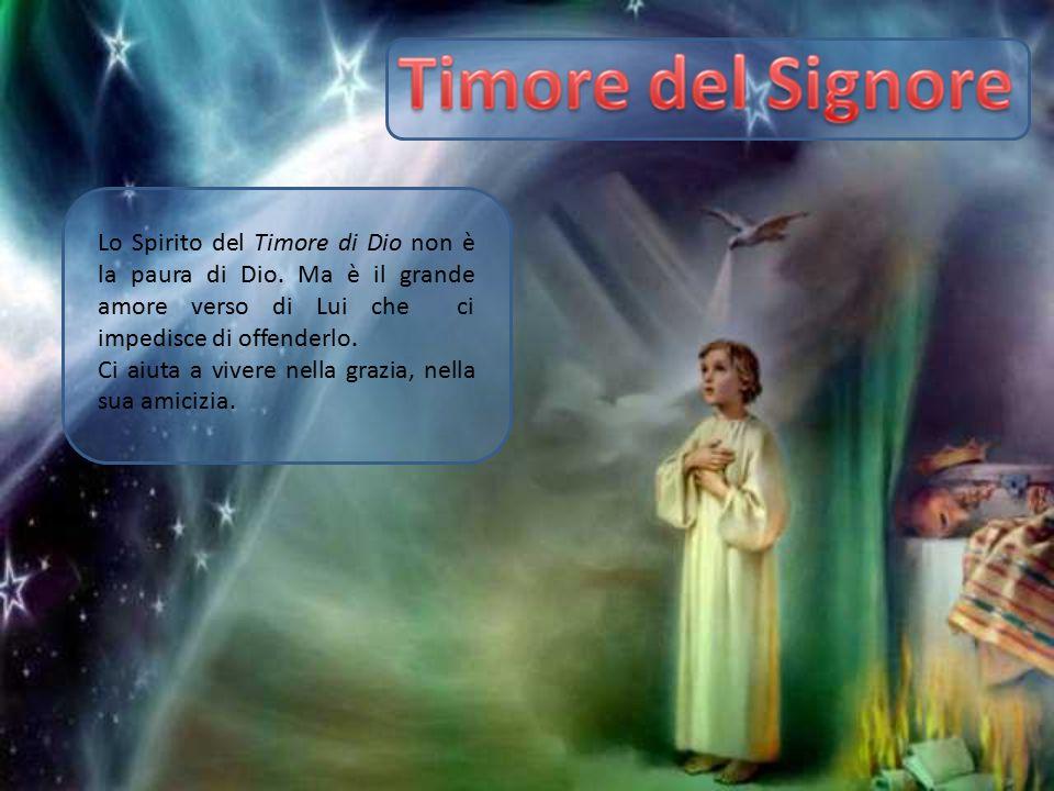 Lo Spirito del Timore di Dio non è la paura di Dio. Ma è il grande amore verso di Lui che ci impedisce di offenderlo. Ci aiuta a vivere nella grazia,