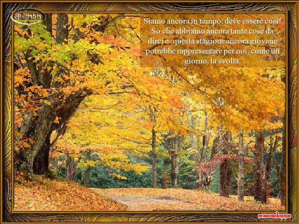 Una foglia ingiallita sospinta dal vento, entra dalla finestra aperta cadendo ai miei piedi, ricordandomi che è di nuovo autunno e, distogliendomi, mi regala un soffio di ottimismo.