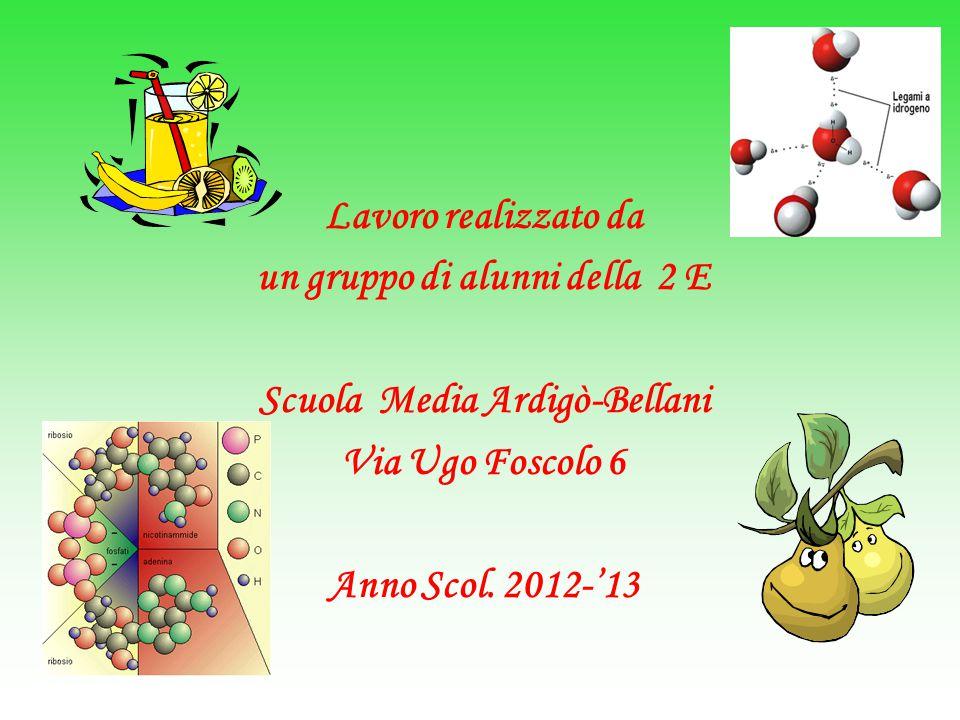 Lavoro realizzato da un gruppo di alunni della 2 E Scuola Media Ardigò-Bellani Via Ugo Foscolo 6 Anno Scol.