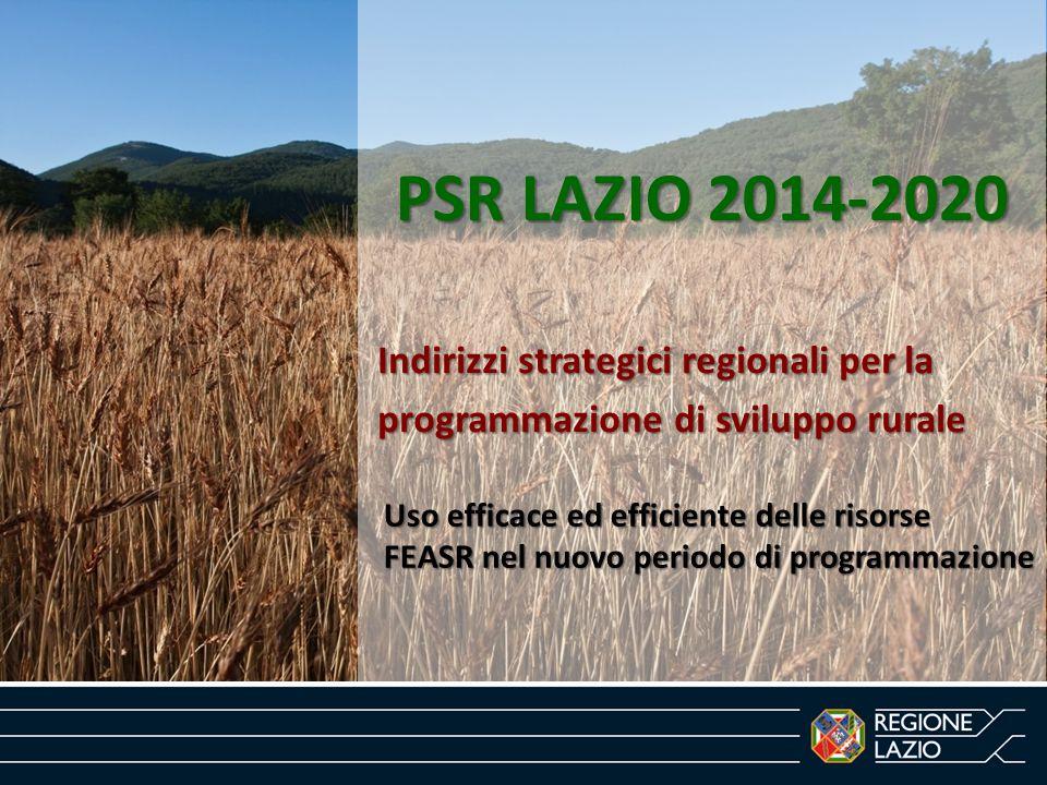 PSR LAZIO 2014-2020 Indirizzi strategici regionali per la programmazione di sviluppo rurale Uso efficace ed efficiente delle risorse FEASR nel nuovo p