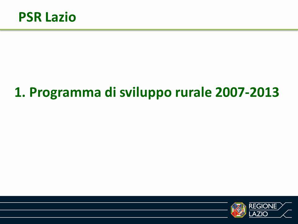 PSR 2007-2013 FEASR Asse 1 Competitività Asse 2 Ambiente e Gestione del territorio Asse 3 Diversificazione Economica e Qualità della vita Asse 4 LEADER Unico sistema di Programmazione finanziamento – monitoraggio - controllo PSR Lazio