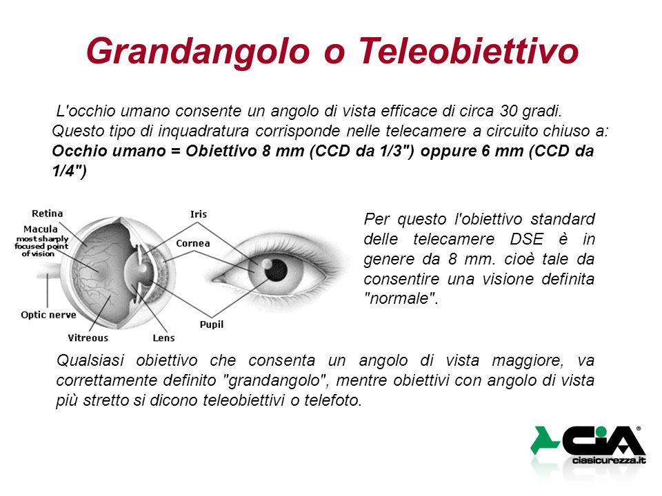 L'occhio umano consente un angolo di vista efficace di circa 30 gradi. Questo tipo di inquadratura corrisponde nelle telecamere a circuito chiuso a: O
