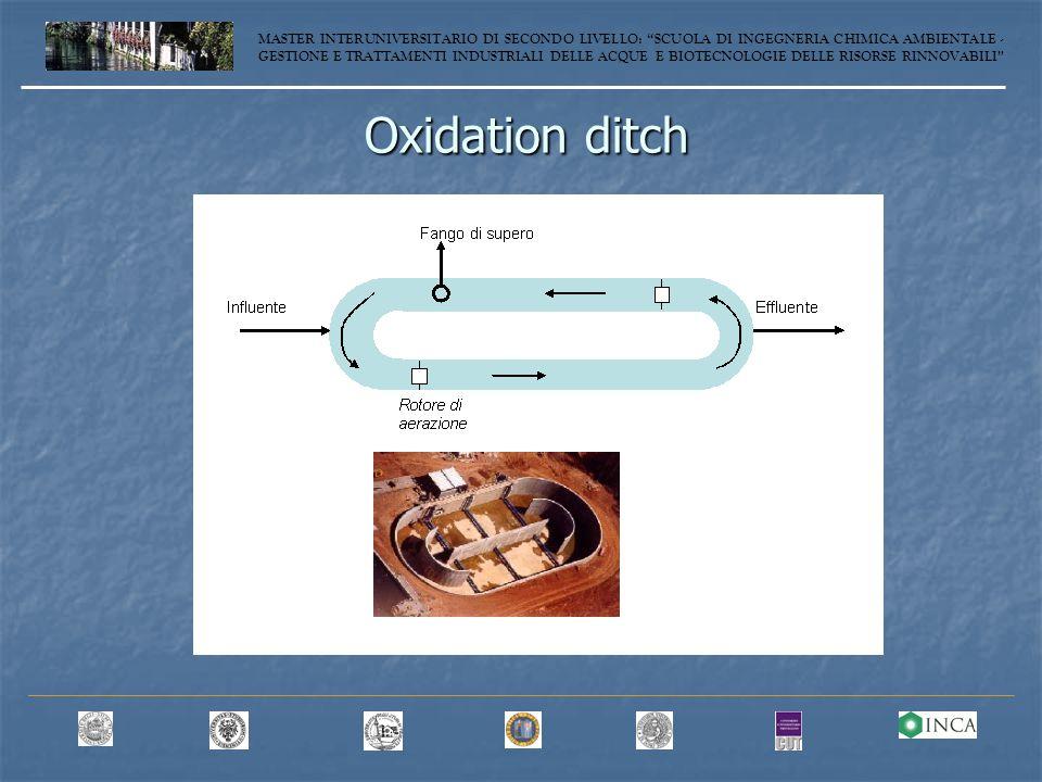 Oxidation ditch MASTER INTERUNIVERSITARIO DI SECONDO LIVELLO: SCUOLA DI INGEGNERIA CHIMICA AMBIENTALE - GESTIONE E TRATTAMENTI INDUSTRIALI DELLE ACQUE E BIOTECNOLOGIE DELLE RISORSE RINNOVABILI
