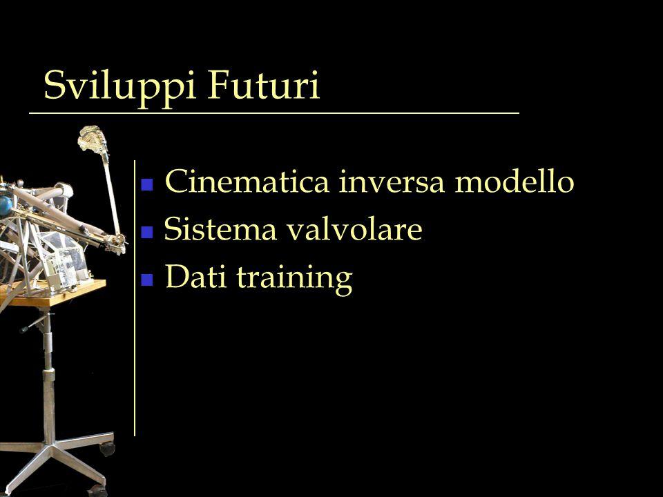 Sviluppi Futuri Cinematica inversa modello Sistema valvolare Dati training