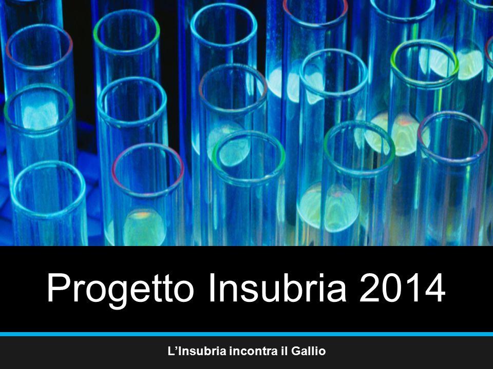Progetto Insubria 2014 L'Insubria incontra il Gallio