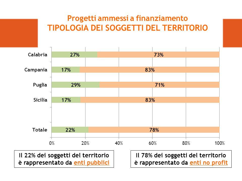 Il 78% dei soggetti del territorio è rappresentato da enti no profit Il 22% dei soggetti del territorio è rappresentato da enti pubblici Progetti ammessi a finanziamento TIPOLOGIA DEI SOGGETTI DEL TERRITORIO