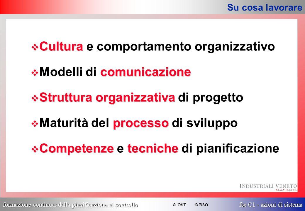 formazione continua: dalla pianificazione al controllo fse C1 - azioni di sistema  OST  RSO Su cosa lavorare v Cultura v Cultura e comportamento org