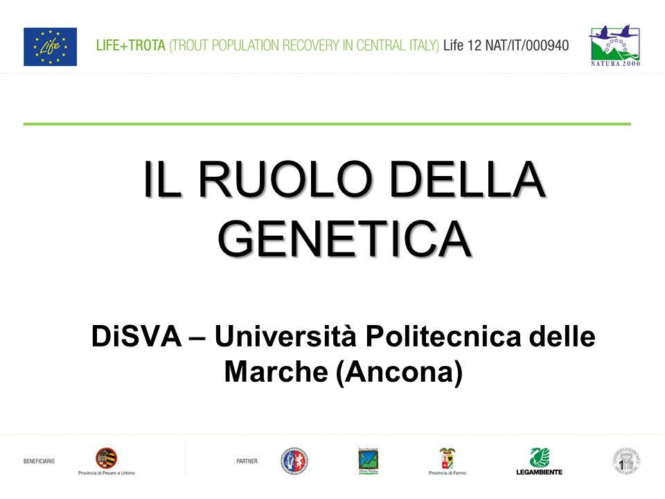 IL RUOLO DELLA GENETICA DiSVA – Università Politecnica delle Marche (Ancona) 1
