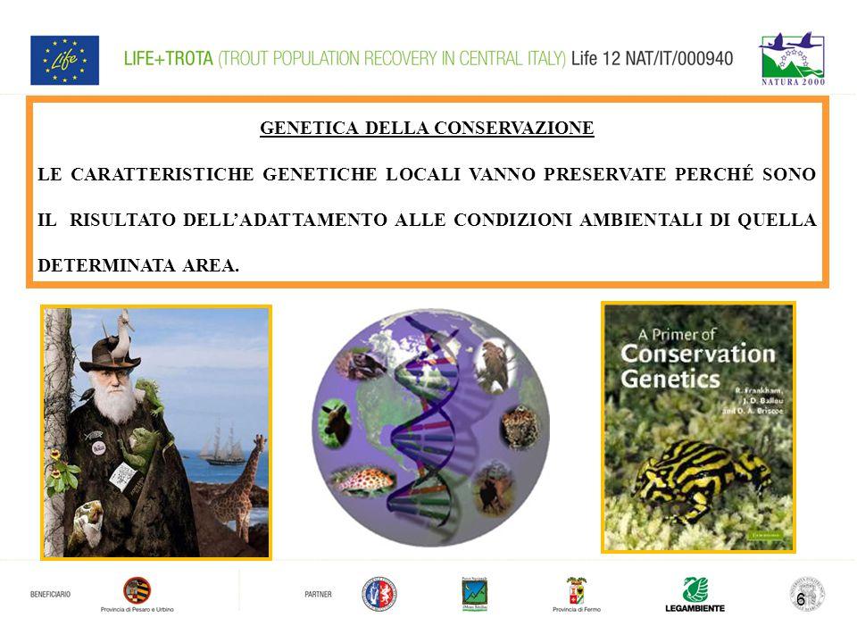 6 GENETICA DELLA CONSERVAZIONE LE CARATTERISTICHE GENETICHE LOCALI VANNO PRESERVATE PERCHÉ SONO IL RISULTATO DELL'ADATTAMENTO ALLE CONDIZIONI AMBIENTALI DI QUELLA DETERMINATA AREA.