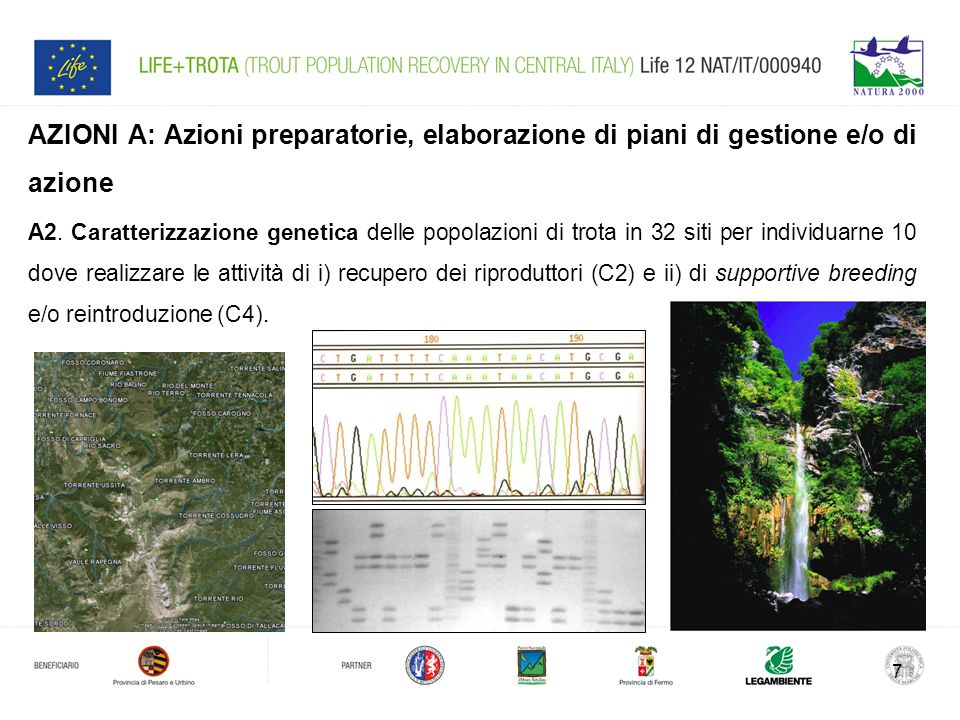 7 AZIONI A: Azioni preparatorie, elaborazione di piani di gestione e/o di azione A2.