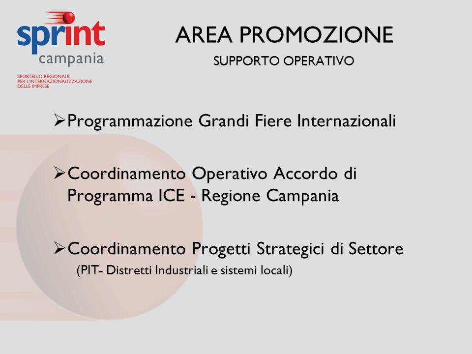 AREA PROMOZIONE SUPPORTO OPERATIVO  Programmazione Grandi Fiere Internazionali  Coordinamento Operativo Accordo di Programma ICE - Regione Campania