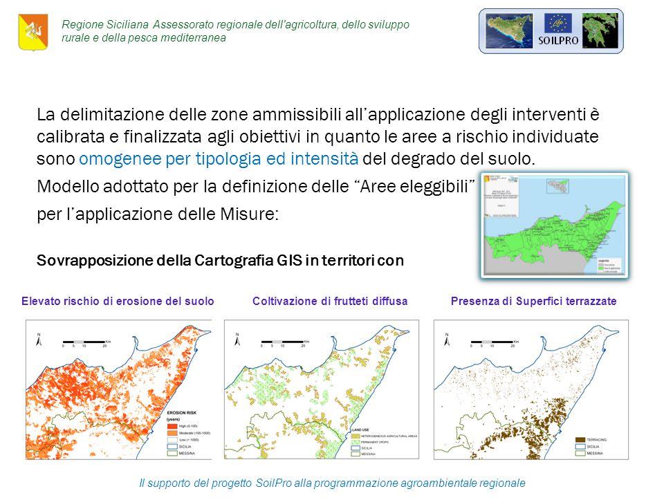 La delimitazione delle zone ammissibili all'applicazione degli interventi è calibrata e finalizzata agli obiettivi in quanto le aree a rischio individuate sono omogenee per tipologia ed intensità del degrado del suolo.