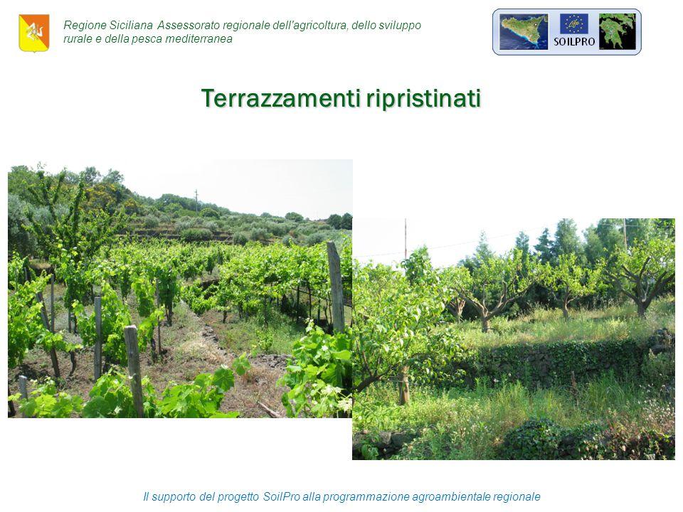 Il supporto del progetto SoilPro alla programmazione agroambientale regionale Terrazzamenti ripristinati Regione Siciliana Assessorato regionale dell agricoltura, dello sviluppo rurale e della pesca mediterranea