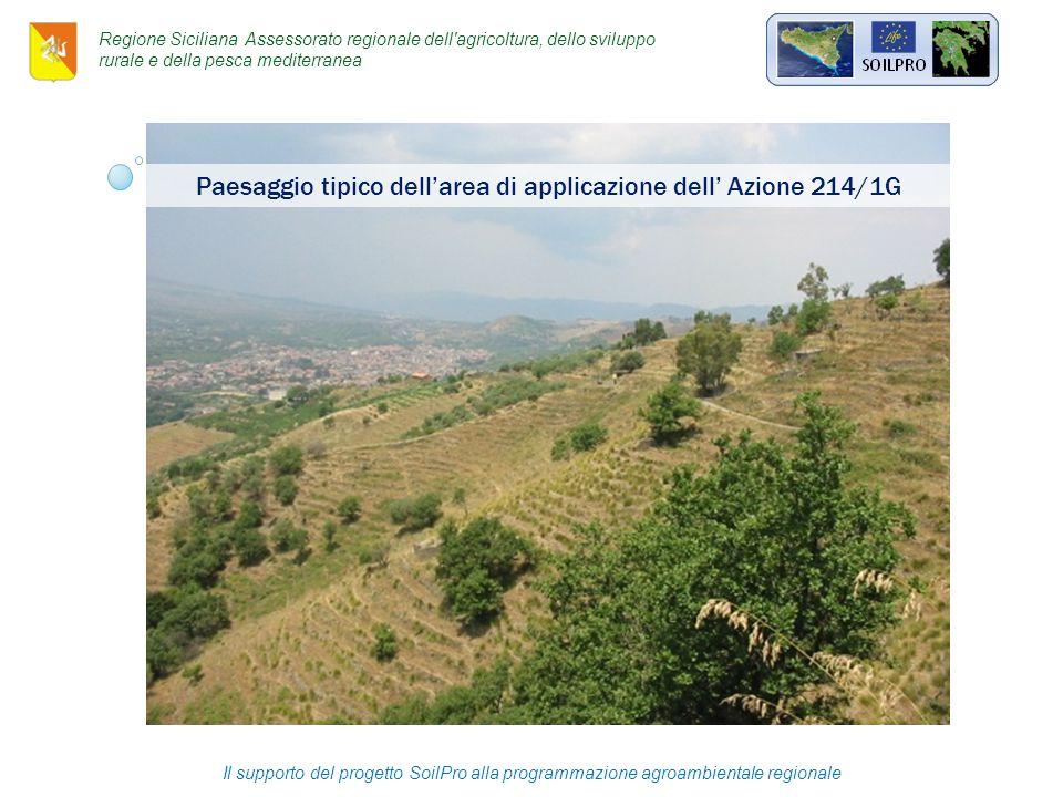 Paesaggio tipico dell'area di applicazione dell' Azione 214/1G Il supporto del progetto SoilPro alla programmazione agroambientale regionale Regione Siciliana Assessorato regionale dell agricoltura, dello sviluppo rurale e della pesca mediterranea